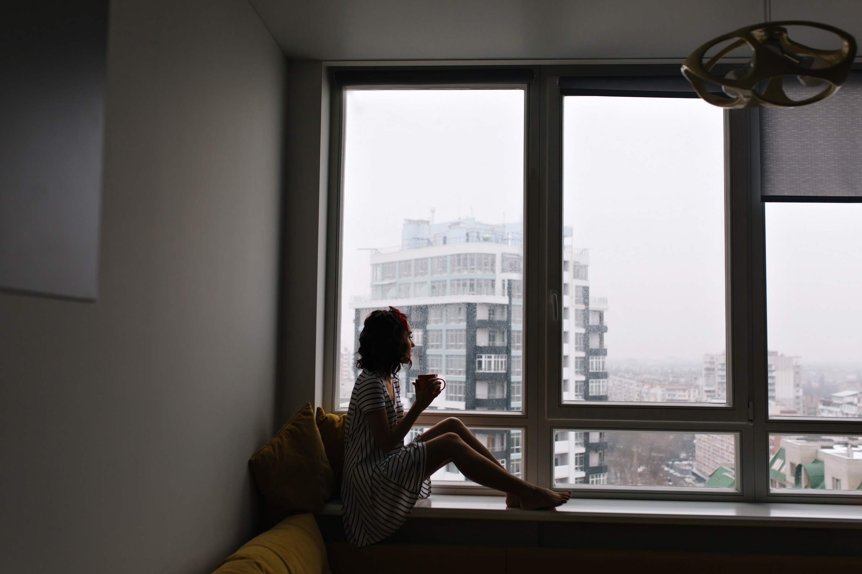 3m thinsulate window film san francisco